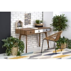 B38 biurko orzech / wielobarwny
